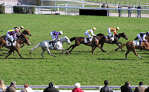 Horse-race at Auteuil hippodrome Français : Co...