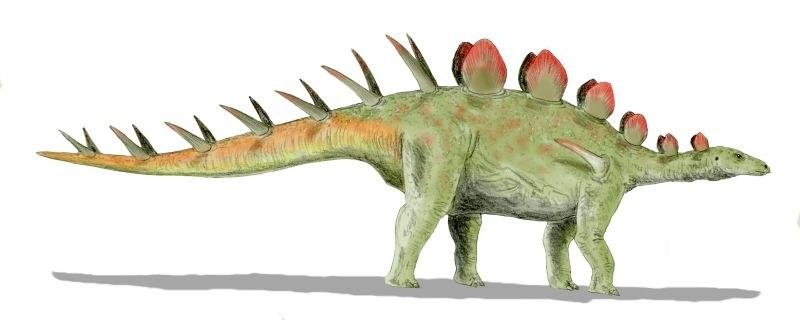 Chialingosaurus BW