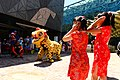 Chinese Lunar New Year 2014, Melbourne AU (12250661103).jpg