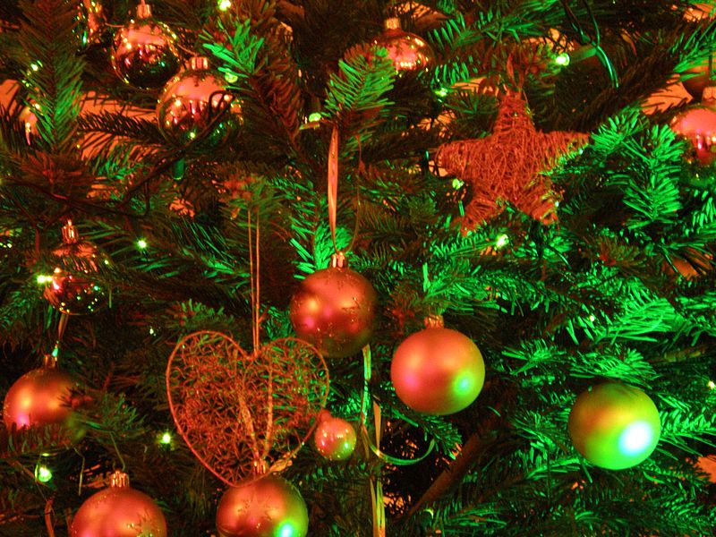 File:Christmas tree 2008.JPG