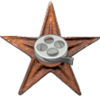 CinemaBarnstar.png