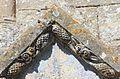 Cintheaux église Saint-Germain décor portail.JPG