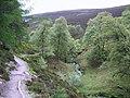Clachnaben Path - geograph.org.uk - 832543.jpg