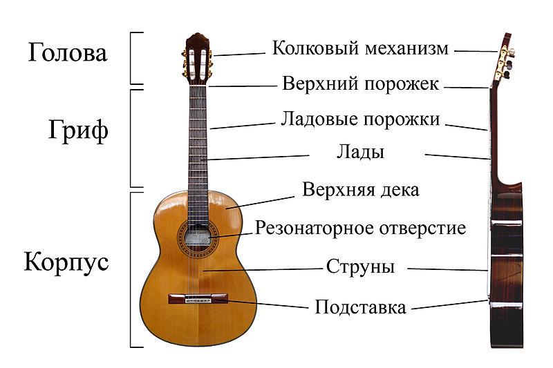Изображение гитары из Википедии