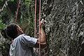 Climbing (4627040909).jpg