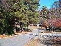 Cobb County, GA, USA - panoramio - Idawriter (31).jpg