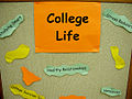College Life Display (back display close-up) (3969469669).jpg