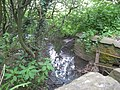 Colliter's Brook in Yanley Lane - geograph.org.uk - 1358702.jpg