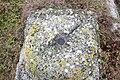 Colonia Ulpia Escus 2010 PD 0076.JPG