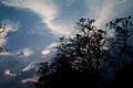 Colour photo of light in the sky, Sri Lanka.jpg