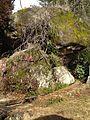 Corp Stone of Tsumago-juku.jpg
