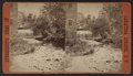 Cosscar Falls, Saratoga, N.Y, from Robert N. Dennis collection of stereoscopic views.png