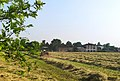 Countryside view in Gerole Borgosatollo Italy.jpg