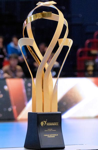 File coupe de france nationale f minine 2014 wikimedia commons - Coupe de france feminine handball ...
