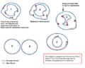 CpDNA Replication.png