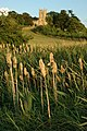 Croome D'Abitot Church - geograph.org.uk - 1421448.jpg