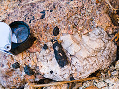 Crystals of black riebeckite in alkaline pegmatite, near Évisa (Corsica, France).jpg