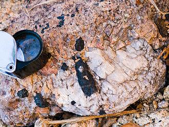 Riebeckite - Black riebeckite in an alkaline pegmatite from Lindinosa near Évisa, Corsica, France