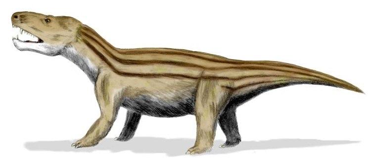 Cynognathus BW
