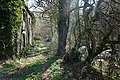DSC01525 aldea Romeán cerca de la Fraga de Carballido, Fonsagrada, Lugo, Galicia.jpg