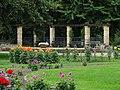 Dahliengarten, Großer Garten, Dresden (291).jpg