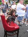 Decadence 2013 Doggie on a Chair.JPG