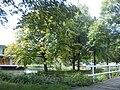 Delft - 2011 - panoramio (313).jpg