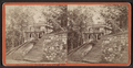 Denmans Cottage Sea-Cliff (Sea Cliff) L. I., from Robert N. Dennis collection of stereoscopic views.png