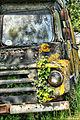 Derelict Van (2519205634).jpg