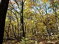 Devil's Lake State Park - panoramio.jpg
