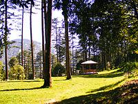 Dhanaulti 2.jpg