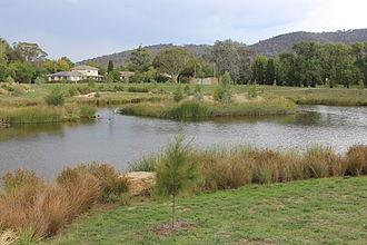 Dickson, Australian Capital Territory - Dickson wetlands