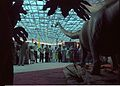 Diplodocus with Visitors - Dinosaurs Alive Exhibition - Science City - Calcutta 1995-June-July 499.JPG