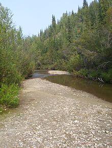 Potok bonanza creek na mieste objavu zlata