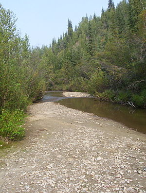History of Yukon - Bonanza Creek