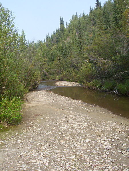 File:Discovery Claim at Bonanza Creek (1).JPG
