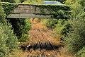 Disused railway, Ballinderry (4) - geograph.org.uk - 2584318.jpg