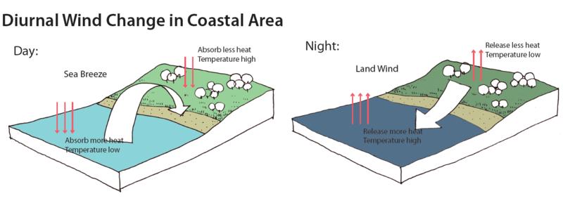 Diurnal wind change in coastal area.png