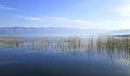 Dojran Lake 210.jpg