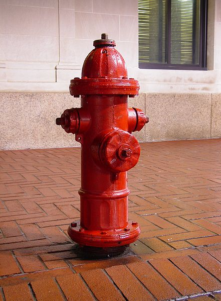 File:Downtown Charlottesville fire hydrant 1.jpg
