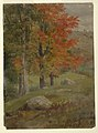 Drawing, Woods in autumn, 1865 (CH 18200433).jpg