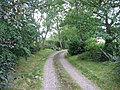 Driveway to Ballaggan - geograph.org.uk - 216077.jpg