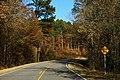 Duck Springs Road - Old AL227 - Hidden Drive Sign (49210194522).jpg