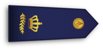 Dutch Police Rank Commissaris.png