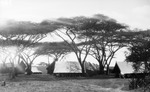 ETH-BIB-Camp Serengeti-Kilimanjaroflug 1929-30-LBS MH02-07-0384.tif