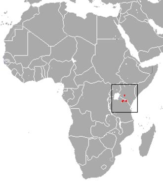 East African highland shrew - Image: East African Highland Shrew area
