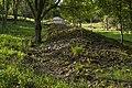 Ein Lesesteinriegel im Waldstetter Tal.jpg