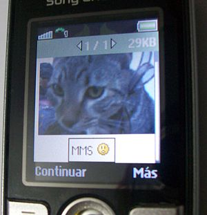 Text messaging - A multimedia message displayed on a mobile phone