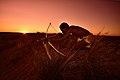 Elia Fester, Kalahari Khomani San Bushman, Boesmansrus camp, Northern Cape, South Africa (20353843928).jpg