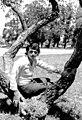 Elias figueroa joven.jpg